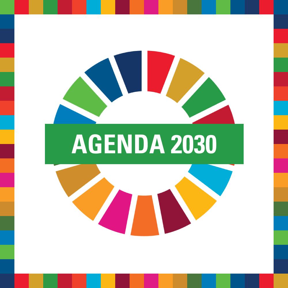 Link a pagina Agenda 2030 sul sito